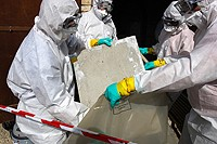 Asbestos Removal Newcastle 365820 Image 0