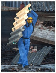 Asbestos Removal Newcastle 365820 Image 2
